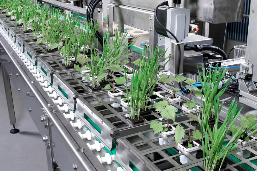 BREL automation-process-engineering14